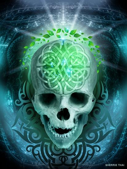 Nebulus Skull Art